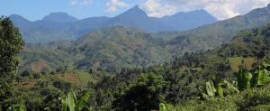 タンザニア・ウルグル山域
