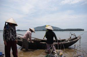ラグーンで牡蛎を獲る女性たち、ベトナム・フエ省