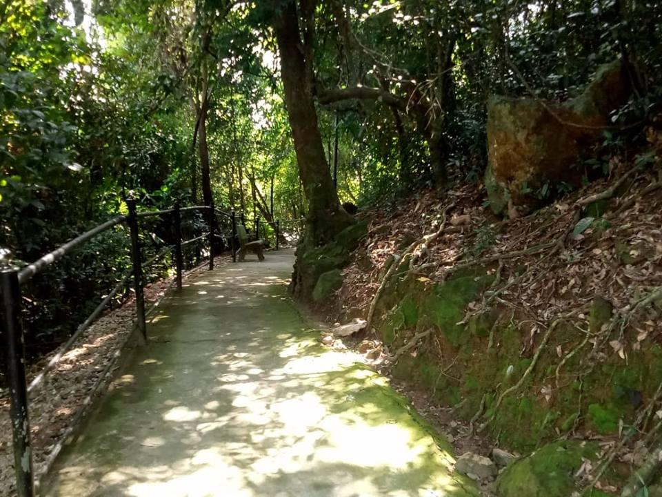 郊外の道、フエ市・ベトナム