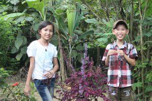 フック・ティック村で・ベトナム