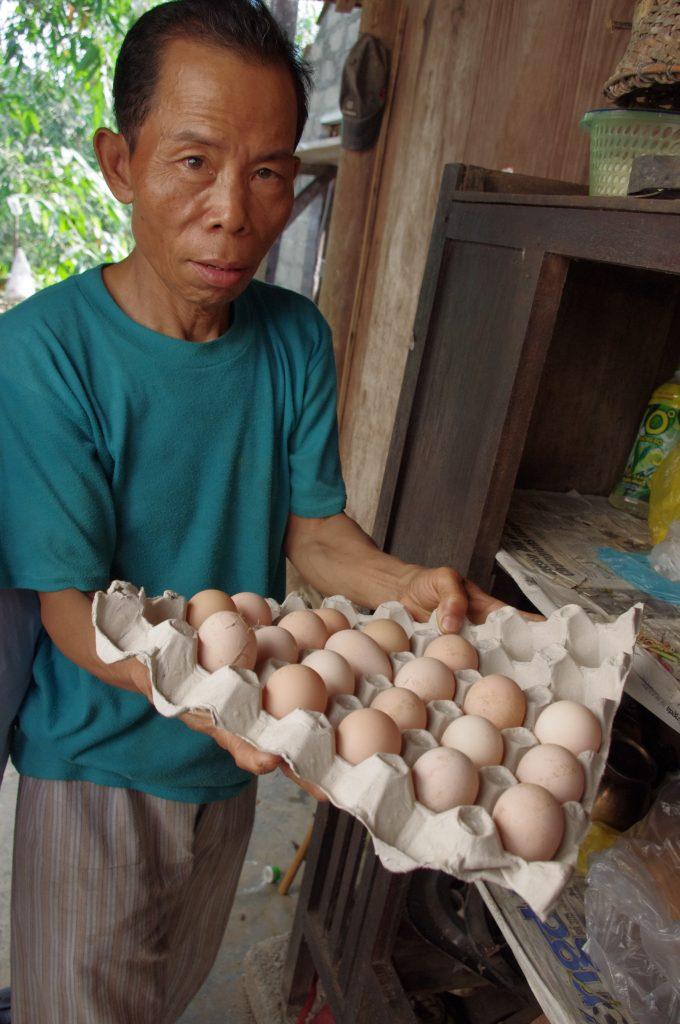 ヤーさんとホロホロ鳥の卵