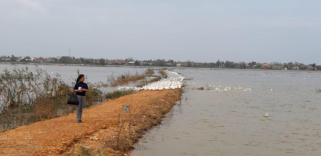タントアン、洪水の水がひかない、フエ市